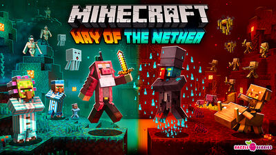 Way of the Nether