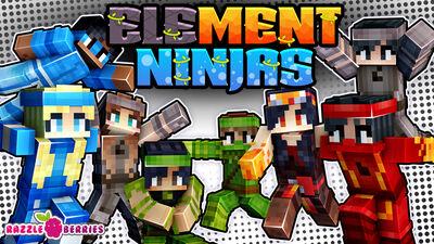 Element Ninjas